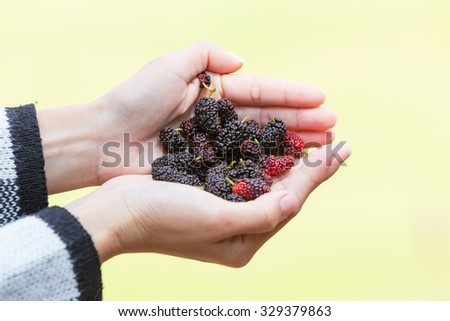 Mulberry in the hands of women