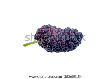 Mulberry isolated on a white background. Isolated food series. - stock photo
