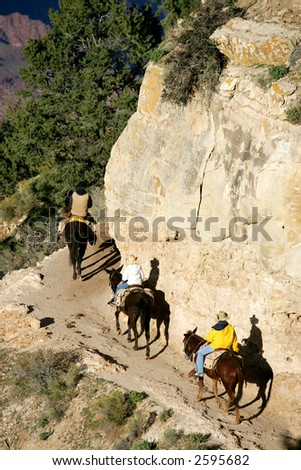 Mule riders in Grand Canyon National Park - stock photo
