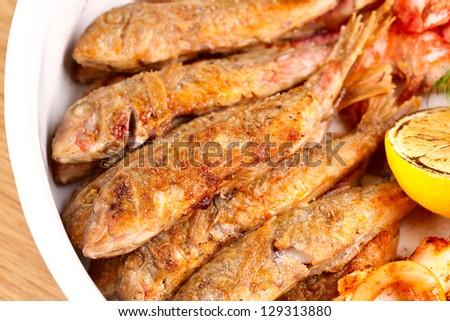 Mullet fish - stock photo