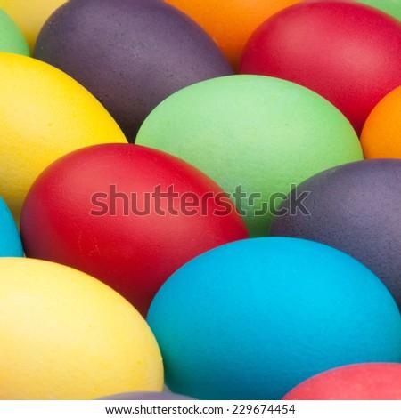 multi color eggs  - stock photo