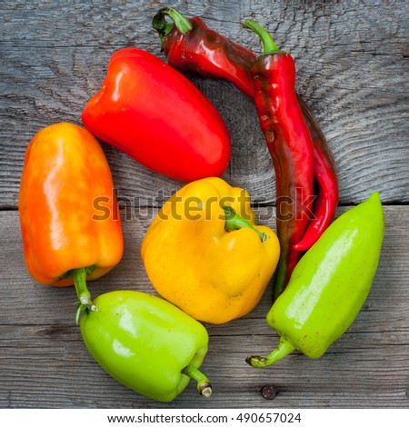 Multi-colored peppers, square