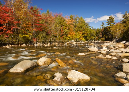 Multi-coloured fall foliage along a river. Photographed at the Swift River, White Mountain National Forest in New Hampshire, USA. - stock photo