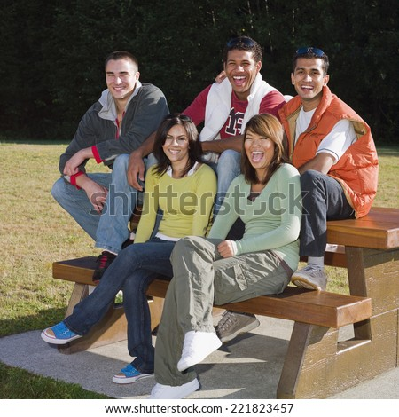 Multi-ethnic friends sitting on picnic table