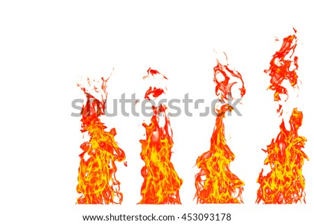 multi fire flames- 4 steps yellow, orange and red and red Fire flame isolated on white isolated background