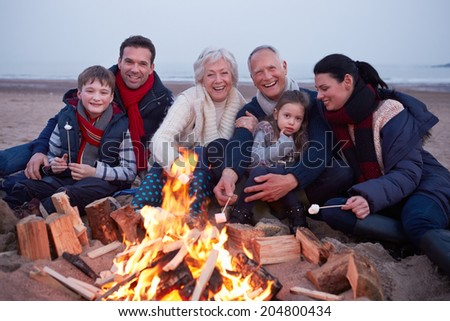 Multi Generation Family Having Barbeque On Winter Beach - stock photo