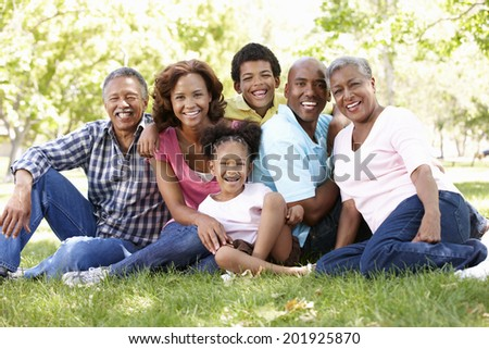 Multi-generation  family in park - stock photo