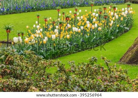 Multicolor and mixed flowerbed in the grass in the park at the day light - stock photo