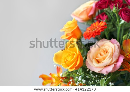 Multicolor flowers with gray background