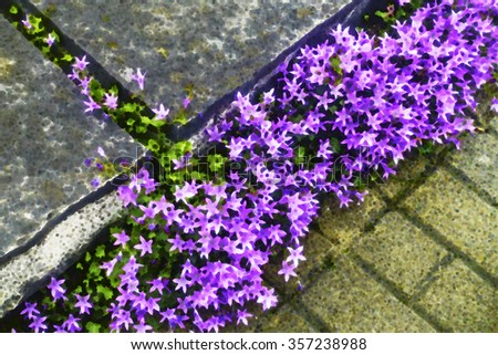 Multicolored abstract high-angle view of a flower bed along paving stones in a spring garden, for seasonal, horticultural or landscaping themes - stock photo