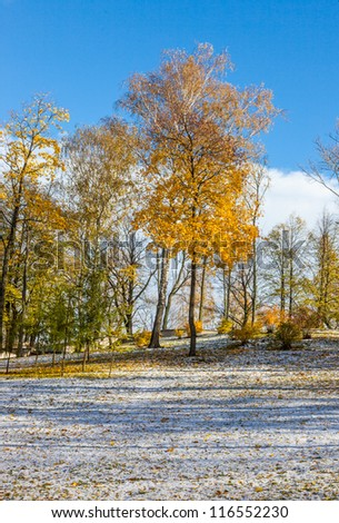 Multicolored Autumn landscape with golden leaves in the Latvian countryside