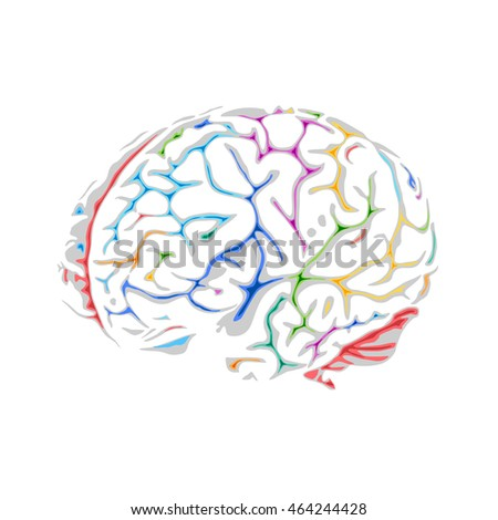 Multicolored brain - illustration