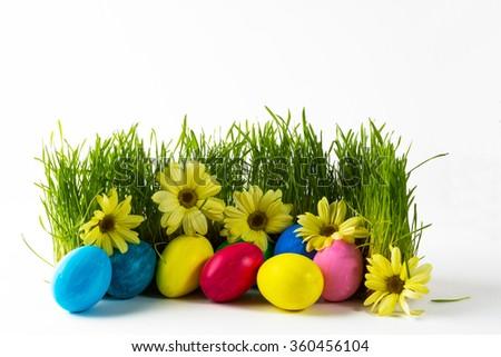 Multicolored Easter eggs in fresh green grass with yellow flowers daisy. Easter background. Easter symbol. Easter hunt. Copy space - stock photo