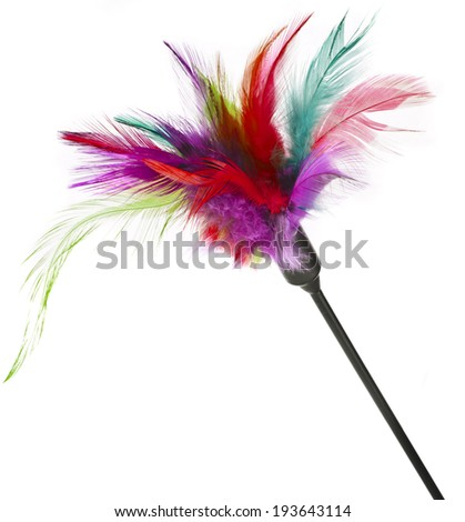 Multicolored feathered pole cat toy on a white background - stock photo