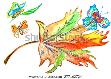 Multicolored leaf butterfly