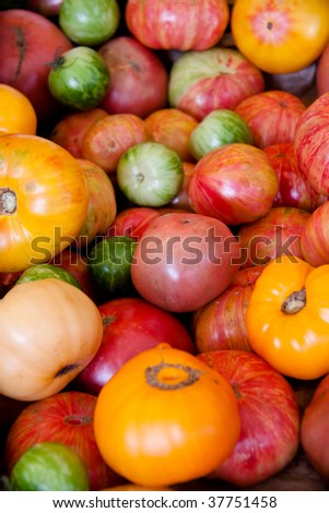 Multicolored tomatoes in a pile at the market - stock photo