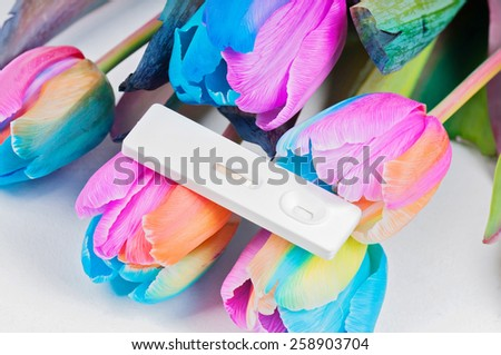 Multicolored tulips and pregnancy test - stock photo
