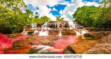Multicolored waterfall river in Colombia, Cano Cristales