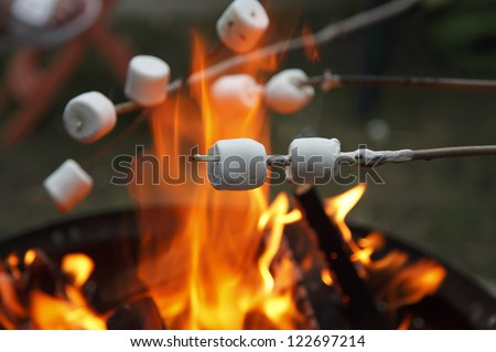 Multiple marshmallows extended over a camp fire to roast. - stock photo