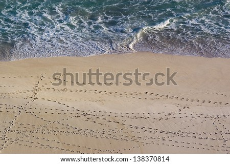 Multiple paths of footsteps crisscross a beach in South Africa - stock photo