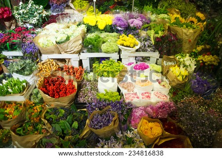 multitude of color flowers at the wholesale market - stock photo