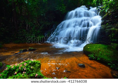 Mun Dang waterfall and dragonflowers it's waterfall in the rainforest in Thailand.