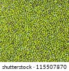 Mung bean closeup background - stock photo