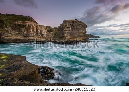 Muriwai, Auckland's rugged west coastline - stock photo