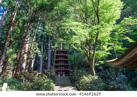 Nara meishō hitori annaizu and Nara Tourism – ASIA453