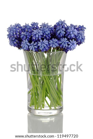 Flower Vase Stock Photos Images Amp Pictures Shutterstock