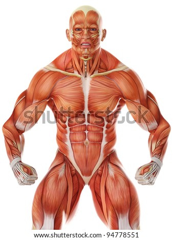 muscle man angry pose - stock photo