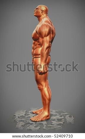 muscle man figure side view stock illustration 52409710 muscle clip art animation muscle clipart with happy birthday tatoo