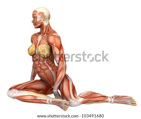 muscle woman on the floor frontal - stock photo