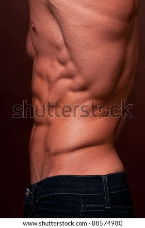 Muscled male torso in jeans - stock photo