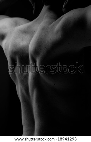 muscular back - stock photo