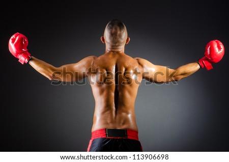 Muscular boxer in studio shooting - stock photo