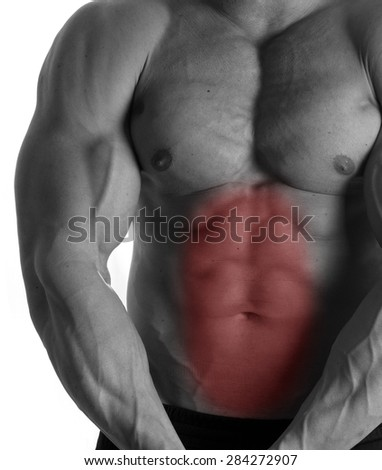 Muscular male torso with abs selected on white background