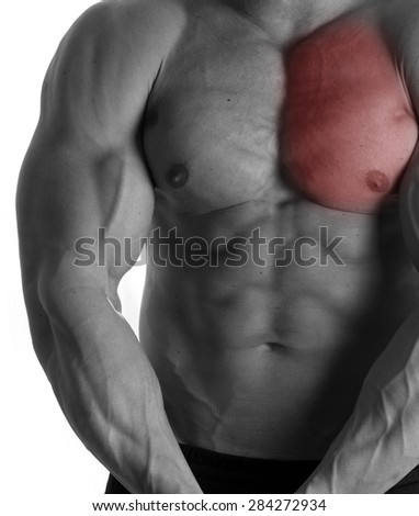 Muscular male torso with chest selected on white background - stock photo