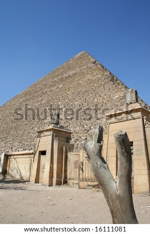 museum in front of pyramide of giza