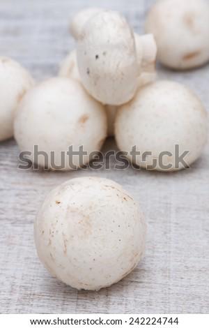 mushroom - stock photo