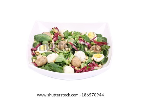 Mushroom salad with pine nuts and radicchio. Isolated on a white background.