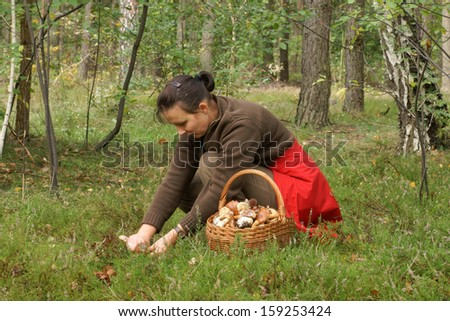 Mushrooming, woman picking mushrooms in the forest - stock photo