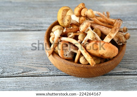 Mushrooms in a bowl on wooden boards, food