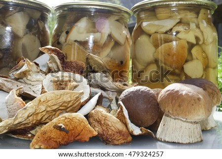 Mushrooms, jam, dried mushrooms and boletus pickled in a jar on light table.