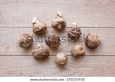 Mushrooms on rustic wooden background  - stock photo