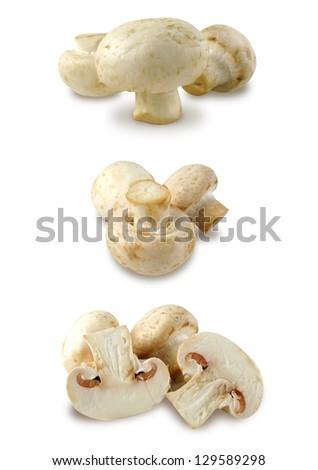 Mushrooms set - stock photo