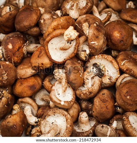 Mushrooms. Vegetables and herbs for sale at asian market. Organic food background - stock photo