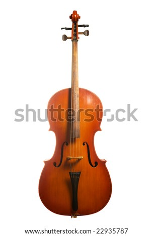 Musical instrument cello isolated on white background - stock photo