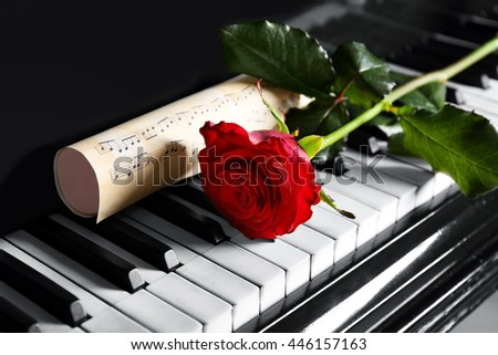 Musical notes and red rose on piano keys, close up