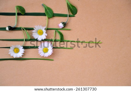 musical notes of flowers - stock photo